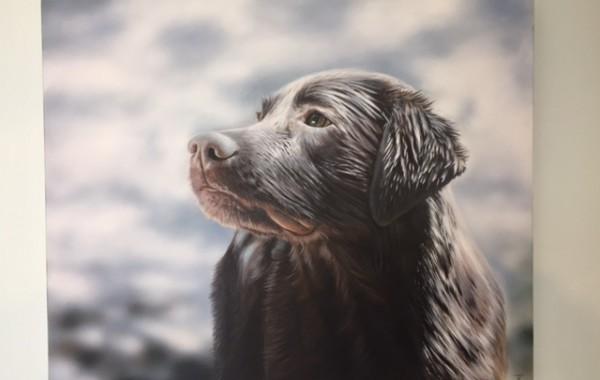 Labradorhündin Hollie nach dem Wasserbad Zitzelsberger GmbH